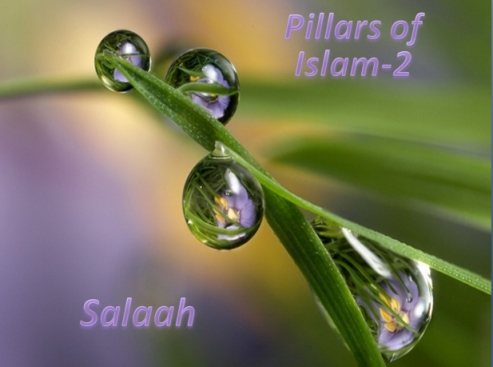 Salaah-02-ages 7-8