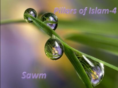 Sawm ages 7-8