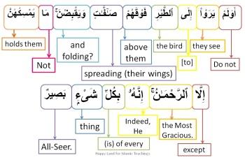 Surah Al Mulk-verse 19, w4w pracitce