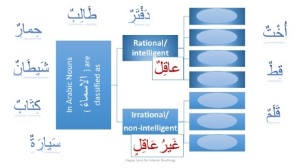 madinah-arabic-book-1-lesson-16-and-17-kullu-jama-muanath